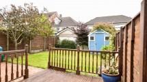 18 back garden
