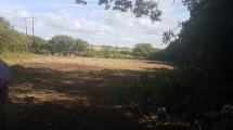 Tonroe Clarinbridge - McNabb Site 2 - small
