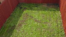 190 Fearann Ri  rear garden